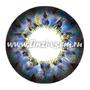Цветные линзы EOS Honey Blue mini